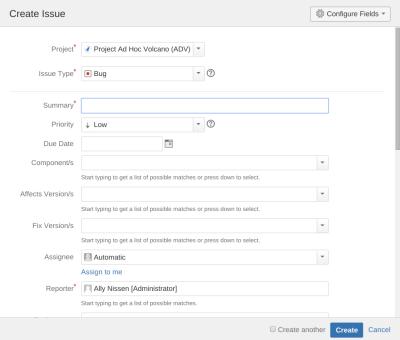 Create Issue Screenshot